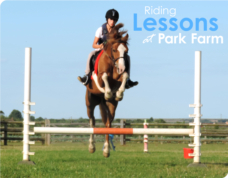 Riding Lessons at Park Farm