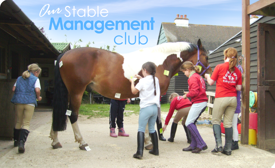 Our Stable Management club